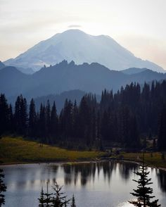 TIM FRANKLIN PHOTOGRAPHY — Lost in the stunning beauty of a Mt. Rainier...