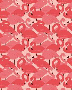 Flamingos by Esther Lara
