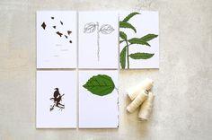 Dix illustration botanique de cartes vierges avec des feuilles vert vif et oiseaux marron
