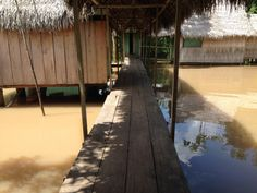 Book Llaquipallay Lodge and Expeditions, Nauta on TripAdvisor: See 108 traveller reviews, 192 candid photos, and great deals for Llaquipallay Lodge and Expeditions, ranked #6 of 49 hotels in Nauta and rated 5 of 5 at TripAdvisor.