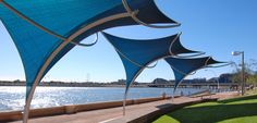 Tensile Shade, Sunami - Recommended by Lori
