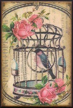 Romantic Vintage Birdcage