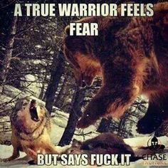 Funny pictures about True Warrior. Oh, and cool pics about True Warrior. Also, True Warrior photos. Wolf Quotes, Me Quotes, Motivational Quotes, Inspirational Quotes, Animal Quotes, Warrior Spirit, Warrior Quotes, Ju Jitsu, Military Humor