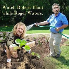 Watch Robert Plant while Roger Waters - Imgur