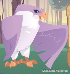 Animal Jam Falcon Codes animal-jam-falcon-codes-2  #AnimalJam #Animals #Falcon http://www.animaljamworld.com/animal-jam-falcon-codes/
