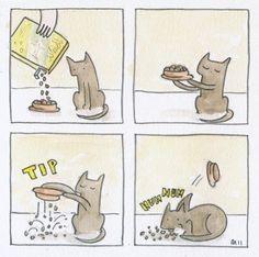 La lógica de los gatos.