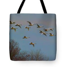 Flock Of Geese Tote Bag by Scott Hervieux.  The tote bag is machine washable…