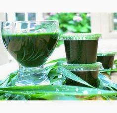 RABAT 10% na kod: ZIELONEKOKTAJLE przy zakupie mrożonych świeżo wyciskanych soków na http://zielonekoktajle.blogspot.com/p/kody-rabatowe.html#sokiwitalnosci