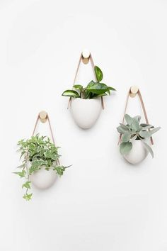 hanging plants indoor A floating garden in polished matte porcelain. This planter elevates your room and accentuates the beauty of your plants with its simple presence and clean c Bathroom Red, Bathroom Plants, Plants In Bedroom, Indoor Planters, Hanging Planters, Wall Hanging Plants Indoor, Wall Of Plants, Wall Plant Pot, Wall Plant Holder