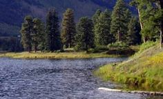 South-mineral-campground- Near Silverton