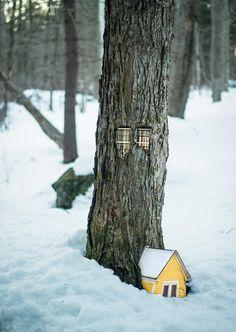 design-dautore.com: Le case negli alberi