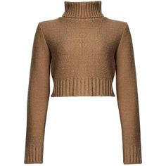 Nicole Turtle Neck Crop Jumper (€13) ❤ liked on Polyvore featuring tops, sweaters, cropped sweater, brown turtleneck, brown crop top, turtleneck jumper and turtleneck top