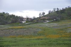 Live among the wildflowers at Ventana Hills