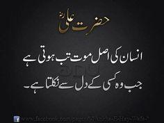 Kafi amwat ho gae ab to....