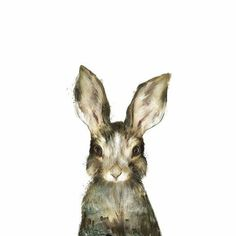 Kids Art Canvas Print - Little Rabbit by Amy Hamilton Art And Illustration, Rabbit Illustration, Illustrations Posters, Illustration Animals, Fine Art Amerika, Lapin Art, Baby Animals, Cute Animals, Draw Animals