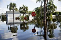 Climate Change to Affect 10 Million Americans by 2075, CBO Warns