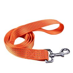 Ennc Heavy Duty Reflective Dog Leash cat Safety Walking and Training Leash Strap-4Ft Long -- Special  product just for you. See it now! (This is an amazon affiliate link. I may earn commission from it)