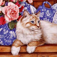 Gallery.ru / Фото #1 - GATOS 5 - marilyn2