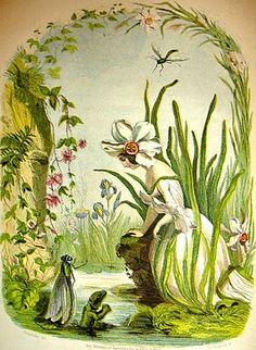 Fleurs animées de Grandville