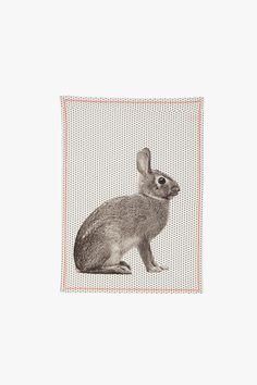 Essuie main en coton Rabbit - Present Time
