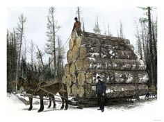 Big Load of Logs on a Skidder in Michigan, c.1880 Giclee Print