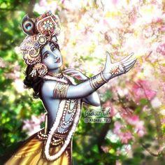 Cute Krishna, Radha Krishna Photo, Shree Krishna, Krishna Art, Radhe Krishna, Radha Krishna Wallpaper, Radha Krishna Pictures, Lord Krishna Images, Saraswati Goddess
