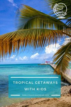 88 best viajes futuros images in 2019 vacation disneyland traveling rh pinterest com