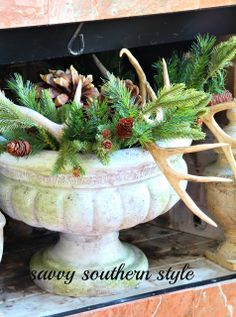 Savvy Southern Style , this is a good winter display...not just for Christmas