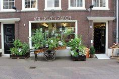 De vier leukste zadenwinkels van Nederland! Lees alles over zaden kopen en de hotspots.