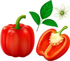 Bell peppers Vegetables