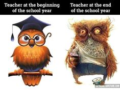 The life of a teacher…