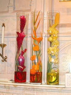 flowers include red ginger red anthurium orange heliconia orange .
