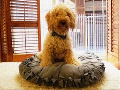 DIY dog bed3