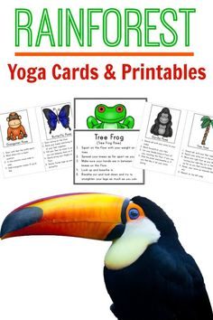 Yoga with a rainforest theme!  Yoga cards and printables perfect for brain breaks for the classroom or to use at home!