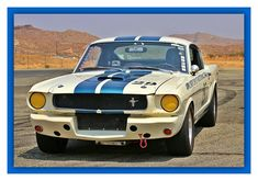 Mustang Fastback, Ford Mustang, Shelby Gt350r, Armored Vehicles, Mustangs, Auto Racing, Mopar, Muscle Cars, Hot Rods