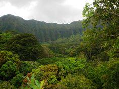 Hiking Maunawili Falls. Oahu, Hawaii.