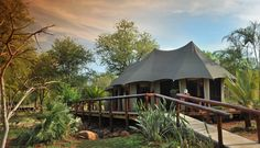Chisomo Safari Camp, Limpopo, South Africa
