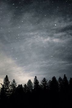 Beautiful isn't the word. ☆ looking at the stars is soo peaceful and calm