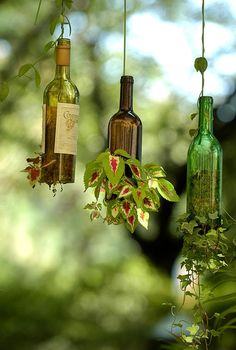 Hanging planters from wine bottles -- Someone figured it out. Use a glass cutter to remove the bottom of the bottle, sand smooth so you don't cut yourself. Make a ball of chicken wire or screen that will fit in the bottle, fill with moss. Put a sturdy wire through the top and attach to the wire ball. Add plant and hang.