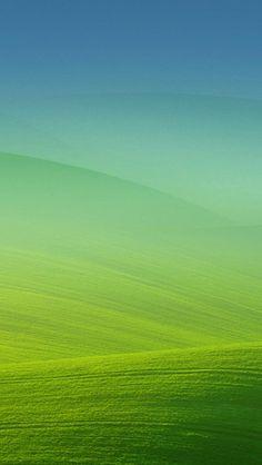 Vast expanse of grasslands