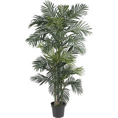 Turn your living room into a tropical paradise by adding this realistic silk palm tree. The lifelike silk foliage adds a touch of greenery to your home without dropping leaves on your floor or requiring watering.