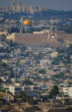 Jerusalem, the Golden Dome palestine Beautiful Mosques, Beautiful Places, Heiliges Land, Terra Santa, Naher Osten, City Of God, Dome Of The Rock, Israel Palestine, Israel Travel