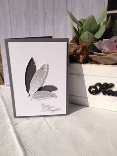 Stampin' Up! Four Feathers stamp set, Feathers Framelits dies.