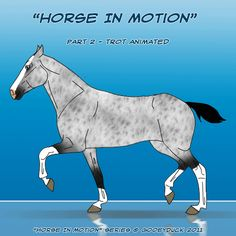 Horse Trotting Gif images