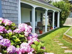 Find your ideal Harwich vacation rental home, cottage or condo using our Power Search, tailored for Cape Cod summer and beach rentals. Cape Cod Vacation Rentals, Cape Cod Ma, Coastal Gardens, Hydrangeas, Nantucket, Daffodils, Summer Beach, Beach House, Condo