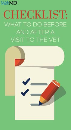 You can help your vet deliver the best care possible when you prepare for routine checkups, know when there's an emergency, and follow up after your pet gets care.