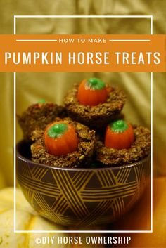These pumpkin horse treats are amazing. My horses were begging for them. Even Eugene who won't eat apples and examines every new treat with a hefty does of skepticism gobbled these up. Homemade Horse Treats, Homemade Dog, Meal Worms, Horse Cookies, Chicken Treats, Dog Training Methods, How To Make Pumpkin, Healthy Dog Treats, Pet Treats