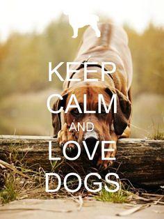 Keep Calm & Love Dogs!