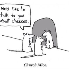Funny cheeses