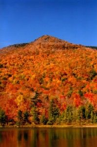 5 Easy Vermont Hikes to Explore this Fall